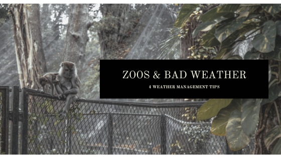zoos and bad weather