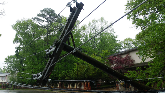 Downed powerline