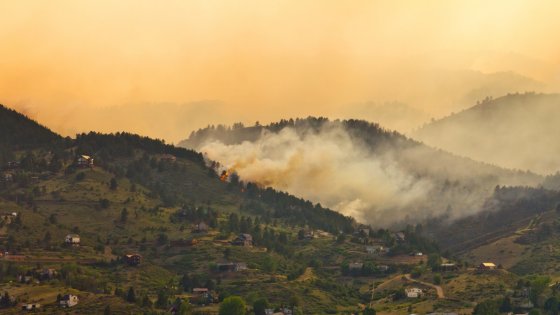 Wildfires burning in a hilly neighborhood