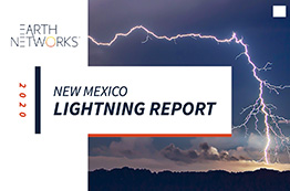 New Mexico Lightning Report Cover